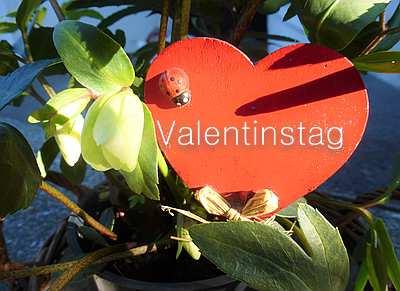Valentinstag, Tag Der Liebenden